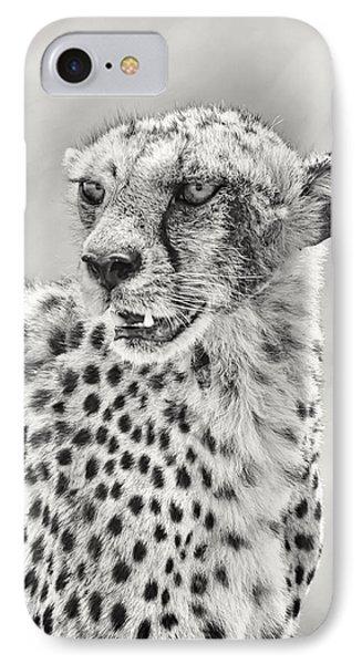 Cheetah Phone Case by Adam Romanowicz