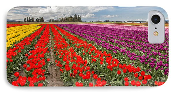 Colorful Field Of Tulips Phone Case by Pierre Leclerc Photography