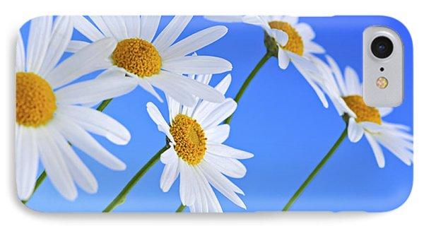 Daisy Flowers On Blue Background IPhone Case by Elena Elisseeva