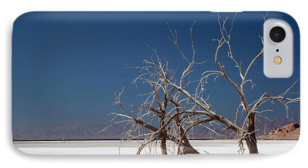 Dead Trees On Salt Flat IPhone Case by Jim West