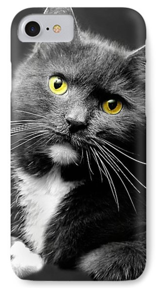 Domestic Gray And White Short Hair Phone Case by Diana Angstadt