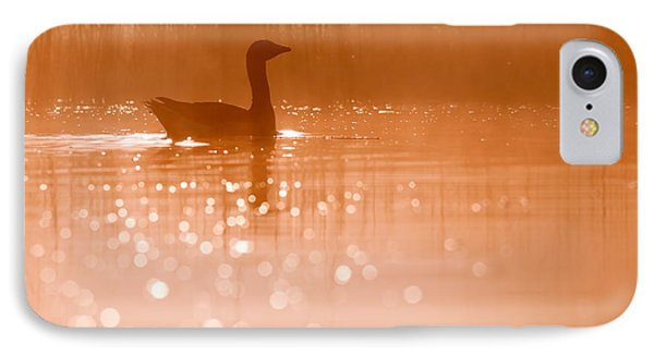 Early Morning Magic IPhone Case by Roeselien Raimond