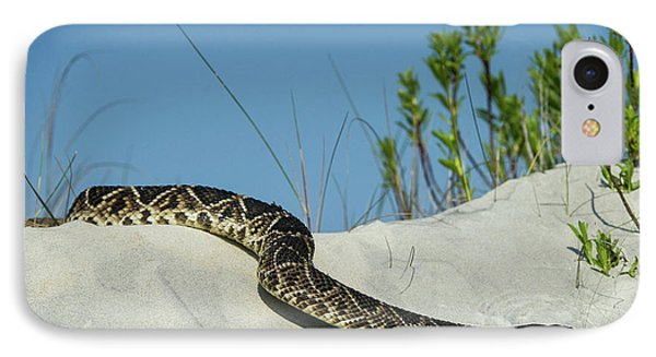 Eastern Diamondback Rattlesnake IPhone Case by Pete Oxford