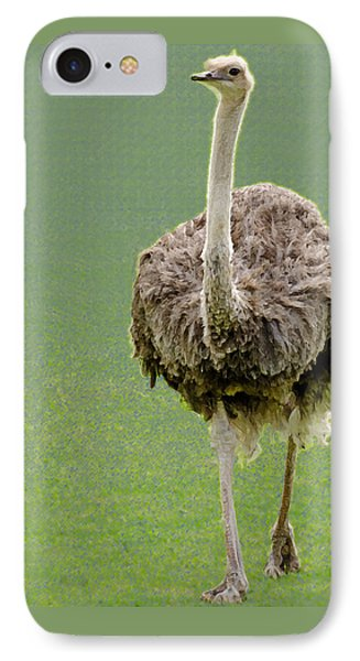 Emu IPhone Case by Ellen Henneke