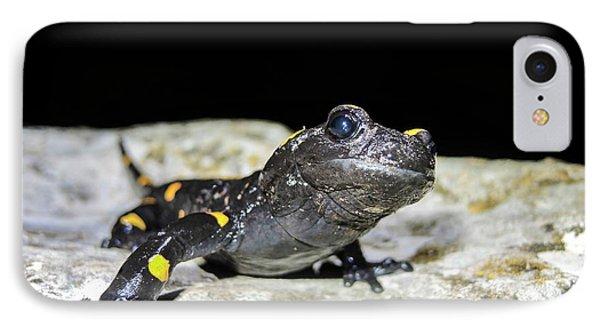 Fire Salamander (salamandra Salamandra) IPhone 7 Case by Photostock-israel