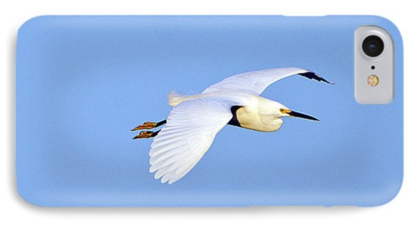 Florida, Venice, Snowy Egret Flying IPhone Case by Bernard Friel
