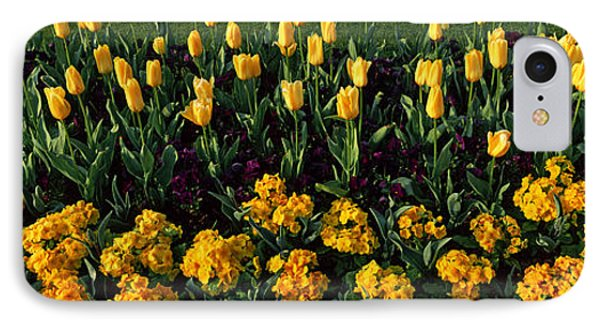 Flowers In Hyde Park, City IPhone 7 Case by Panoramic Images