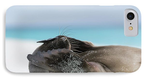Galapagos Sea Lion Pup Covering Face IPhone Case by Tui De Roy