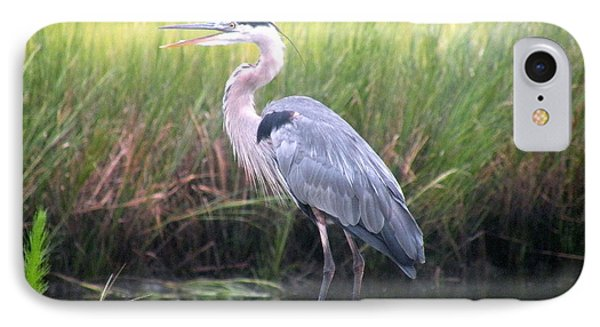 Great Blue Heron Phone Case by Kim Bemis