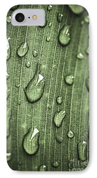 Green Leaf Abstract With Raindrops IPhone Case by Elena Elisseeva