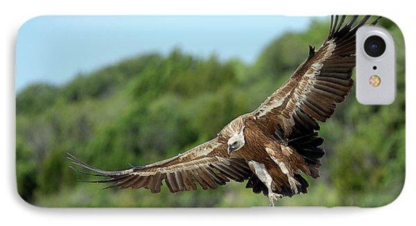Griffon Vulture IPhone 7 Case by Nicolas Reusens