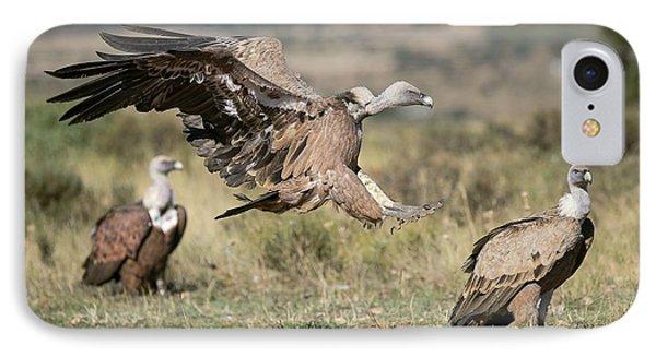 Griffon Vultures IPhone 7 Case by Nicolas Reusens