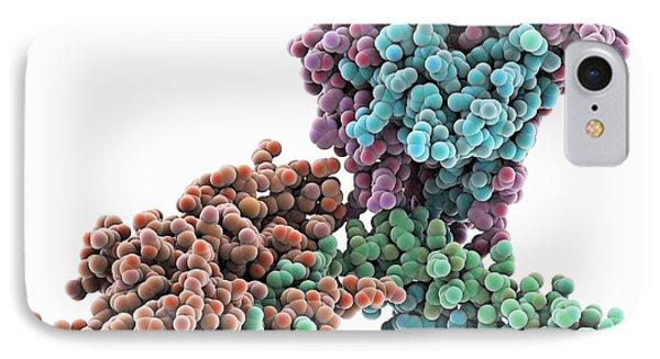 Kinesin Motor Protein Dimer IPhone Case by Laguna Design