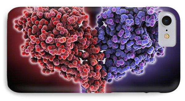 Kinesin Motor Protein IPhone Case by Laguna Design