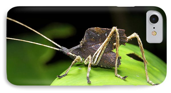 Leaf Mimic Bush-cricket IPhone 7 Case by Dr Morley Read