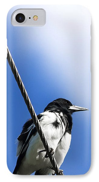Magpie Up High IPhone 7 Case by Jorgo Photography - Wall Art Gallery