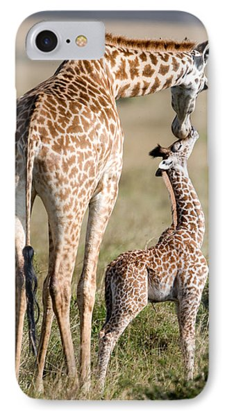 Masai Giraffe Giraffa Camelopardalis IPhone Case by Panoramic Images