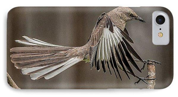 Mockingbird  IPhone Case by Rick Barnard