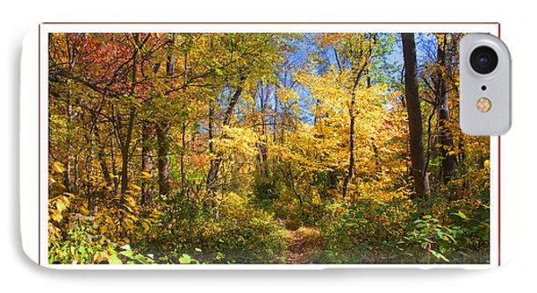 IPhone Case featuring the photograph Narrow Path Through A Forest In Autumn Pennsylvania by A Gurmankin