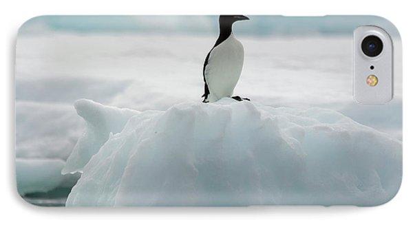 Norway Svalbard Spitsbergen Alkefjellet IPhone Case by Inger Hogstrom