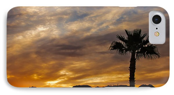 Palm Tree Silhouette IPhone Case by Robert Bales