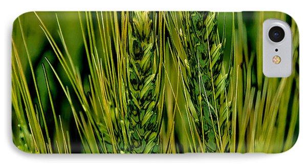 Palouse Wheat Iv IPhone Case by David Patterson