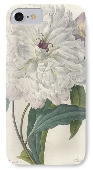 Peony IPhone Case by Pierre Joseph Redoute
