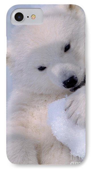 Polar Bear Cub IPhone Case by Mark Newman