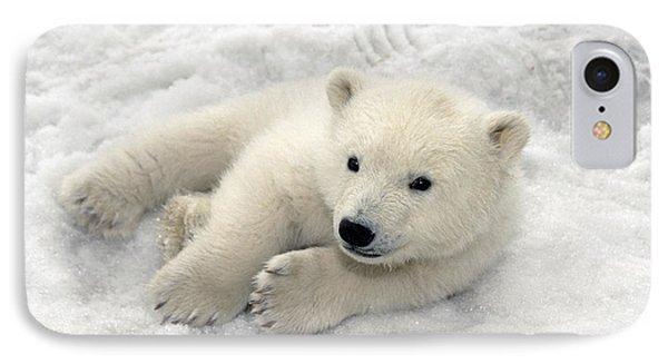 Polar Bear Cub Playing In Snow Alaska IPhone 7 Case by Mark Newman