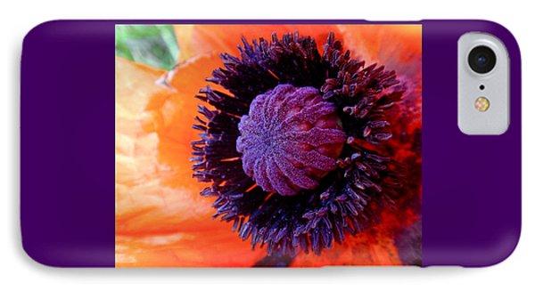 Poppy IPhone Case by Rona Black