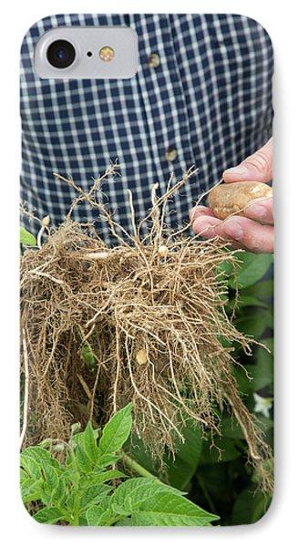 Potato Farming IPhone Case by Jim West
