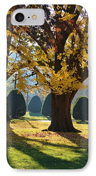 Public Garden Fall Tree IPhone Case by Toby McGuire