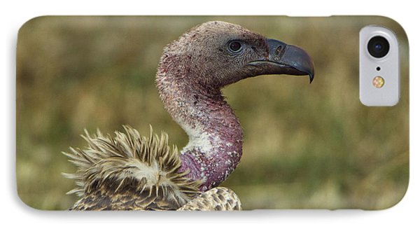 Ruppells Vulture IPhone Case by John Shaw