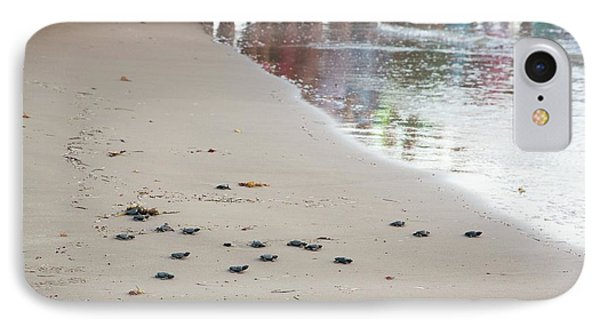 Sea Turtles Conservation IPhone Case by Jim West