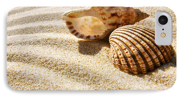 Seashell And Conch Phone Case by Carlos Caetano