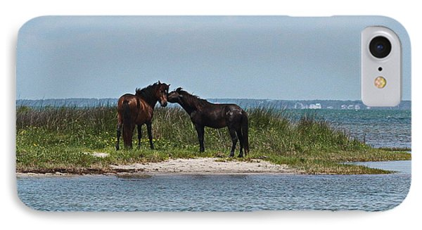 Shackleford Ponies 4 IPhone Case by Cathy Lindsey