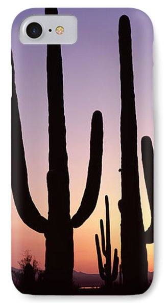 Silhouette Of Saguaro Cacti Carnegiea IPhone Case by Panoramic Images