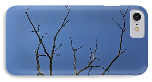 The Lightning Tree Phone Case by David Pyatt