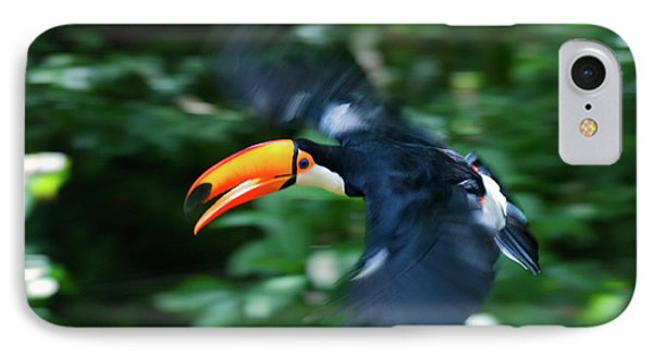 Toco Toucan (ramphastos Toco IPhone 7 Case by Andres Morya Hinojosa