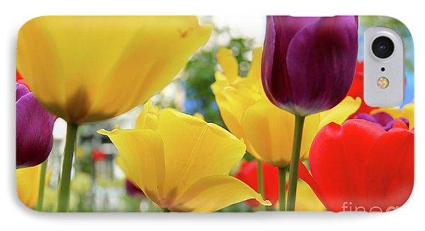Tulips  IPhone Case by Mark Ashkenazi