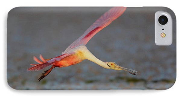 Usa, Florida, Tampa Bay, Alafaya Banks IPhone Case by Jaynes Gallery