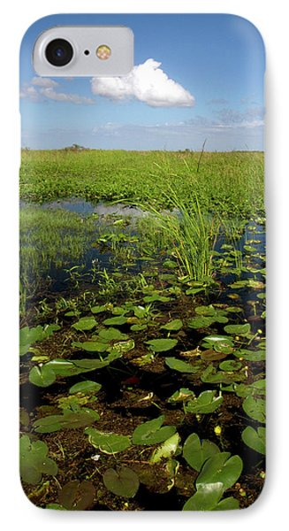 Water Lilies And Sawgrass IPhone Case by David R. Frazier