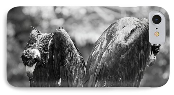 White-backed Vultures In The Rain IPhone Case by Pan Xunbin
