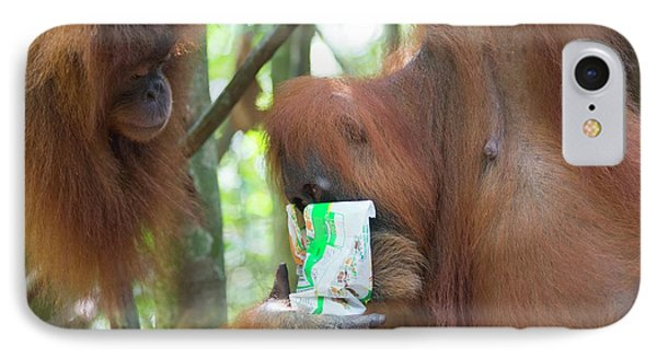 Sumatran Orangutan IPhone 7 Case by Scubazoo
