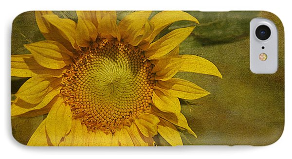 Sunflower IPhone Case by Cindi Ressler