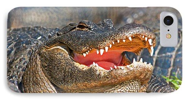 American Alligator IPhone Case by Millard H. Sharp