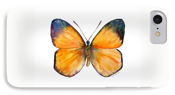 19 Delias Anuna Butterfly Phone Case by Amy Kirkpatrick