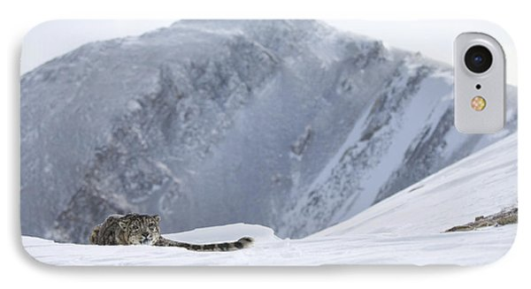 Absolute Solitude Phone Case by Wildlife Fine Art
