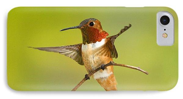 Allens Hummingbird Phone Case by Anthony Mercieca