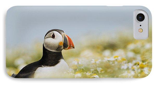 Atlantic Puffin In Breeding Plumage IPhone Case by Sebastian Kennerknecht
